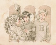 The Trio Harry, Ron, and Hermione with their pets   Harry Potter