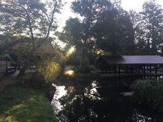 Laufend gebloggt: Morgenlauf in Lübben (Spreewald)
