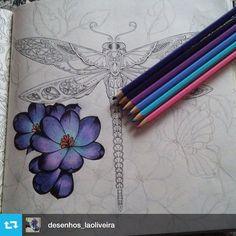 "39 Likes, 3 Comments - Jardim Floresta Oceano (@jardimsecreto_world) on Instagram: ""#Repost from @desenhos_laoliveira with @repost.app #libelula #florestaencantada…"""