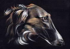 * Barsoi * Borzoi * Levrier * Windhund * A4 LIMITED PRINT # 27 | eBay