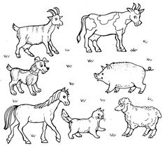 fal | VK Farm Animal Coloring Pages, Coloring Pages For Boys, Coloring Books, Farm Projects, Stuffed Animal Patterns, Educational Activities, Craft Party, Square Quilt, Animal Drawings