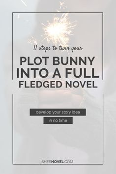11 Steps to Turn Your Plot Bunny into a Full-Fledged Novel.