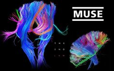 Wallpaper of The Law for fans of Muse 31724776 Great Bands, Cool Bands, Heavy Metal, Good Music, My Music, The 2nd Law, Muse Band, Les Fables, City Events