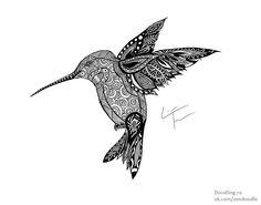 doodles, zentangle