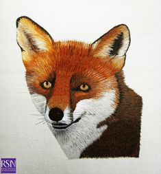 Image taken from a photograph - Foxy