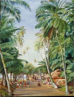 Roadside Scene under the Cocoanut Trees at Galle, Ceylon Marianne North