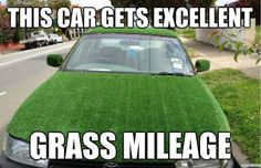 There's a social media platform specifically for cars now. Set up a profile at CarLister.co grass, gas mileage, humor, car, funny