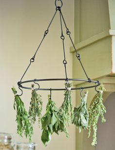 Herb Drying Rack ! Wander around the hardware store for ideas to create herb drying racks !