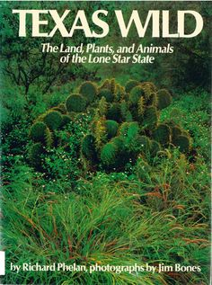 "Texas Wild: The Land, Plants, and Animals of the Lone Star State, by Richard Phelan; photographs by Jim Bones (1976). ""Creosote bushes, kangaroo rats, road runners, rock paintings, and bat caves - everything ordinary and everything strange that can be found in the wild country of Texas is here."" (Front Flap)"