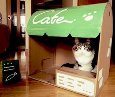 This is so adorable!!! Neko atsume inspired cardboard box cafe/ house thing. Ahhh!! Cuteness overdose