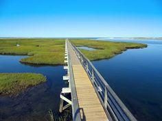 Joe's Retirement Blog: Gray's Beach, Yarmouth, Cape Cod, Massachusetts, USA