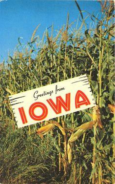 GREETINGS FROM IOWA    Iowa—The TALL Corn State