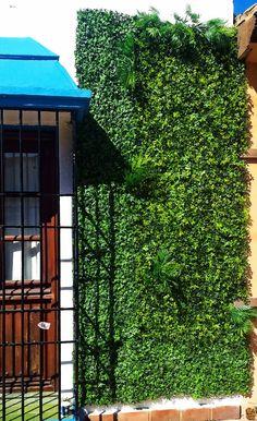 #verticalymusgo #jardinvertical #artificial #naturalpreservado #naturalvivo Nature, Vertical Gardens, Nature Illustration, Off Grid, Mother Nature