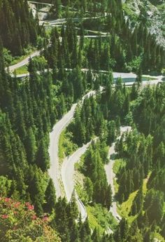 Maloja Pass Grisons Switzerland Bergell Valley Engadin
