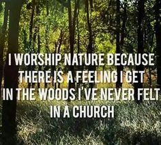 I worship nature because there is a feeling I get in the woods I've never felt in a church. Pagan Quotes, Witch Quotes, Wiccan Witch, Wicca Witchcraft, Wiccan Books, Thing 1, Nature Quotes, Book Of Shadows, Worship