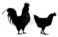 Abstract vector illustration of rooster and hen silhouettes Stock Photo
