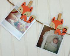 Primer cumpleaños de Fox, primera arbolado cumpleaños, Fox mensuales foto Banner, fotos N-12