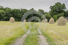 Haystacks and dirt road  on a meadow  in Small village Roznow in Malopolska, Poland.