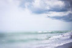 Lensbaby at the beach (monthly blog circle) » Nina Mingioni Photography #seeinanewway #Lensbaby