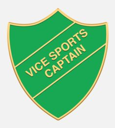 'Vice Sports Captain' shield badge with enamel infill, gold plated wording and a superior Ballou clutch fixing. Various colours are available. *colours may vary slightly in shade due to differing monitor colours and manufacturing processes Size Badges, Monitor, Enamel, Colours, Words, Shop, Polish, Name Badges, Badge