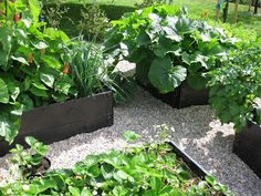 Fint med: svarta pallkragar och småsten runt, för barnen att plantera diverse. Avsides, så dolt så möjligt!!!