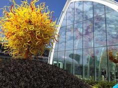 Chihuly Garden and Glass    Fifth Avenue Garage, which is along the east side of the Seattle Center, near the entrance to the EMP. If you grab lunch in the Armory after your visit to the museum, they'll validate your parking,