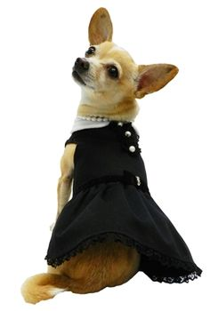 Little Black Dog Dress by Ruff Ruff Couture - available at http://doggyinwonderland.com/item_1608/Little-Black-Dog-Dress-by-Ruff-Ruff-Couture--beautiful-sophisticated.htm starting at $42.00