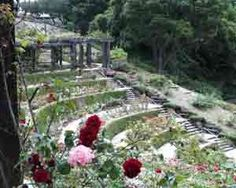 Berkeley Rose Garden: 3,000 rose bushes and 250 varieties of roses, along with breathtaking views of the San Francisco Bay and the Golden Gate Bridge.