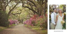 Tara Marie Photography, Early spring plantation wedding, Azaleas, Louisiana, St. Francisville, LA