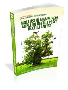 """Anteprima 3D - Ideazione, Progettazione e Sviluppo della grafica di copertina del Libro """"Guida alla fauna di Bella - 2a Parte (Bella - Istituto comprensivo Mario Pagano - Natura)""""."""