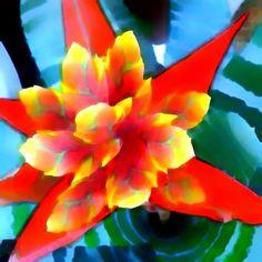 Setembro  Adoro setembro mês de flores, de amores, de gente especial.  Setembro, mês de festa, alegria,celebração. Quase um parabéns por dia.