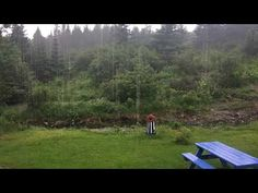 Beautiful summers rain early in the morning Newfoundland and Labrador Canada 🇨🇦 Newfoundland And Labrador, Summer Rain, Early Morning, Canada, Youtube, Beautiful, Youtubers, Youtube Movies