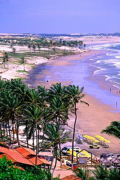 Beaches of Brazilian Northeast