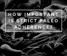 How Important is Strict Paleo Adherence? - Take Fitness