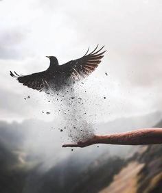 15 Trendy Ideas For Creative Art Photography Surrealism Fantasy Kunst, Fantasy Art, Story Inspiration, Character Inspiration, Creative Photography, Art Photography, Surrealism Photography, Picture Writing Prompts, Birds In Flight