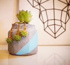 Cement flower pot
