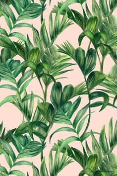 foliage : tropical leaf pattern