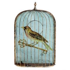 Brown bird in a cage
