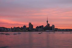 Auckland City from Stanley Point