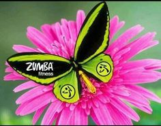 Fitness Logo Zumba Dance   Zumba Fitness : - Workout In Knysna