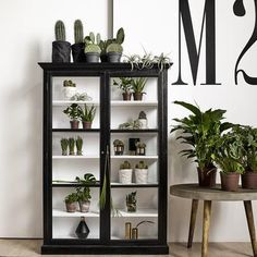 Double Black Wood Display Cabinet - The Forest & Co. Black Display Cabinet, New Cabinet, Cabinet Decor, Cabinet Makeover, Cabinet Design, Kitchen Display Cabinet, Black Cabinet, Cabinet Storage, Wood Display