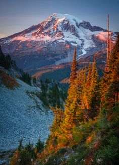 Mount Rainier National Park, Washington; photo by Bryan Swan on 500px