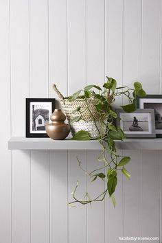 For something low key, a shelf is great for adding greenery and framed pictures (points of interest) to hallways. Get the look with walls painted in Resene Quarter Stack, shelf painted in Resene Stack and vase painted in Resene Spark. Styling by Gem Adams.