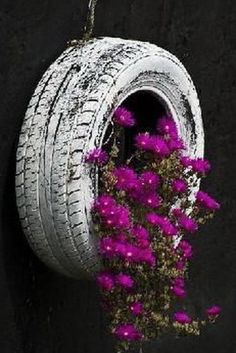 Old-tire-made-into-flower-pot