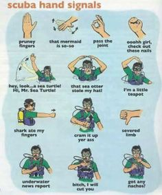 Important Diving Signals!