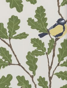 Waldemar wallpaper by Sandberg - birds on oak tree branches with olive green leaves and acorns on white - leaf, foliage Tree Wallpaper, Fabric Wallpaper, Leaves Wallpaper, Oak Leaves, Plant Leaves, White Leaf, Trendy Tree, Pictures To Paint, Canvas Artwork