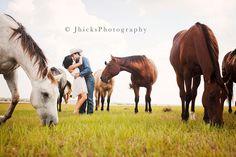 Horses engagement photos