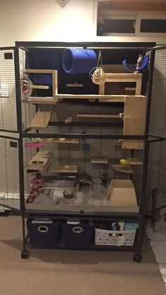 My chinchilla cage..we call it the chinchilla mansion!