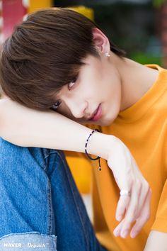 Wen Jun Hui killed us with his softness 😭