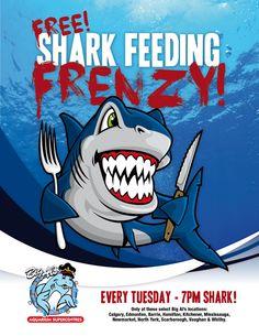 Shark Feeding Frenzy at Big Al's Fish Shop